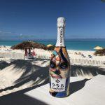 958 santero wines diego bormida artist calavera bottiglie dipinte prosecco skull teschi mondo (16)