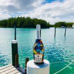 958 santero wines diego bormida artist calavera bottiglie dipinte prosecco skull teschi mondo (63)