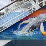 Caribbean Princess Cruises Diego Bormida Artist mural resin dipinti (106)